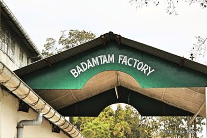 Badamtam Tea Leaves
